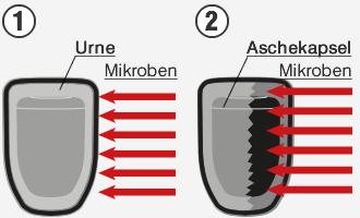 Verlängerte Zersetzung Urne und Aschekapsel